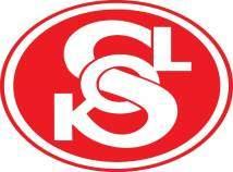logo-sokol-2007