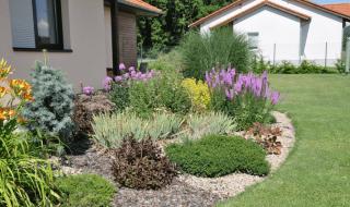 Zahradnictvi-Cheznovice-Foto4